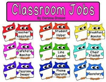 Classroom Jobs - Owl Themed Editable Labels