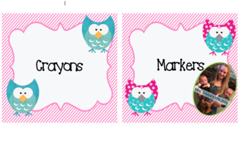 Pink Owl Themed Classroom Supply Labels and Table Numbers