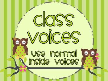 Owl Themed Classroom Traffic Light: Noise-o-Meter Clip Chart