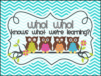 Owl Themed Daily Schedule Cards - Who! Who!...knows what we're learning?
