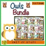Owl Themed Literacy & Math Bundle
