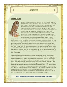 Owl Themed Nature Education Unit-Stage 2 (Magic Forest Academy)