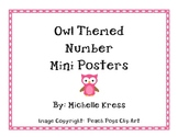 Owl Themed Number Posters