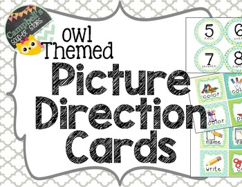 Owl Themed {Picture Direction Cards}