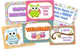 Owl Themed Postcards