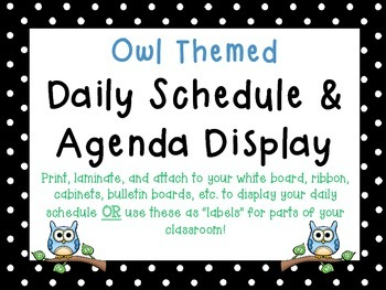 Owl Themed Schedule Cards & Labels and Daily Agenda Remind