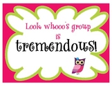 Owl Themed Student Group Name Signs