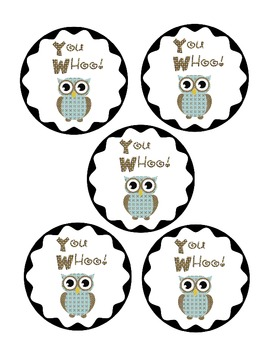 Owl Themed Study Buddies and Ask Me Buddies