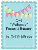 Owl Welcome Pennants