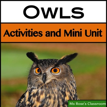 Owls: Activities and Mini Unit