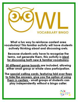 Owl Vocabulary Bingo