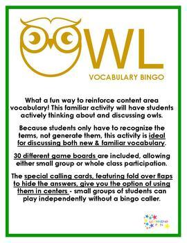 Owl Vocabulary Bingo