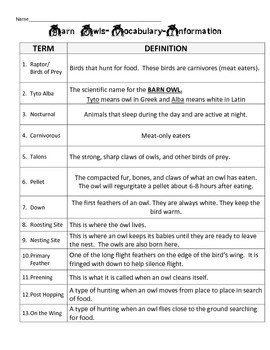 Owl Vocabulary Information & Owl Pellet Data Sheet w/ Graphing Analysis