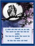 Owl Wisdom Coloring Book