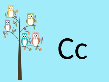 Owl abc word wall and flash cards