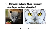 Owl and Bat Scoot and accompanying Worksheet