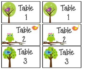 Bird and Owl Themed Classroom Labels and Such