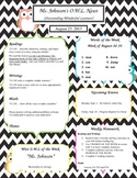 Owl and Chevron Stripe Newsletter Template