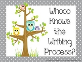 Colorful Polka Dot and Owl Writing Process posters