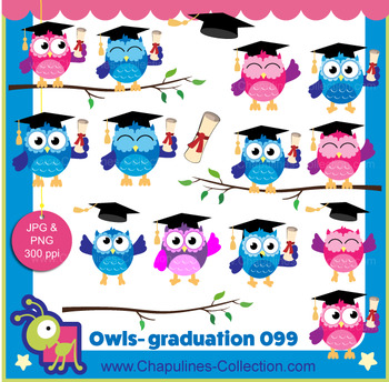 Owl clipart, graduation, end of year school clipart set 099