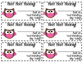 Owl positive behavior note pink clip chart