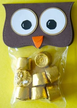 Owl treat bags for Open House/Back to school etc. (set of 12)