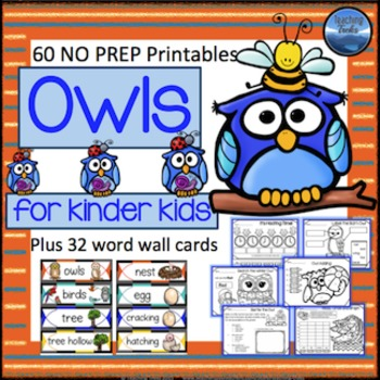 1 Owl Theme: Owls Math and Language Activities for Kindergarten