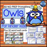 Fall Owl Activities for Kindergarten: Owls Worksheets - Ma