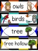 Owl Theme: Owls Math and Language Activities for Kindergarten