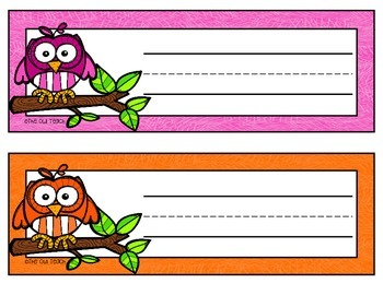 Owls Classroom Theme - Desk Name Tags