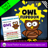 Halloween Science Activities (Owl Research Flipbook)