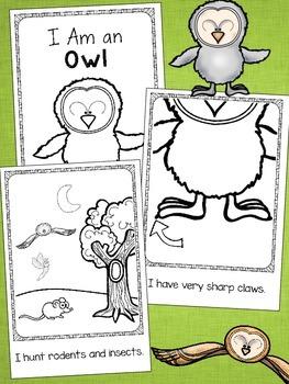 Owls Emergent Reader Set