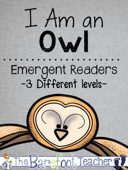 Owls Emergent Reader Set