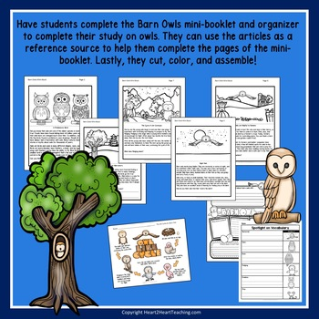 Give a Hoot for Owls - A Non-Fiction Activity Pack - Fall Activities