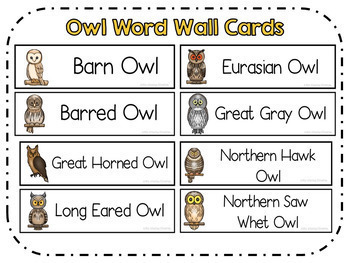 Owls Babies Fiction and Non Fiction