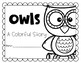 Owls- A Colorful Story