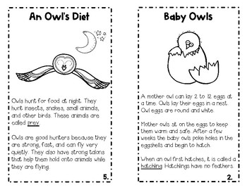Owls An Integrated ELA and Science Study