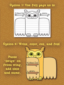 Owl Graphic Organizers