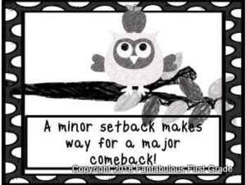Owls- Back to School Growth Mindset Behavior Clip Chart