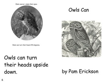 Owls Can- a non-fiction guided reading book