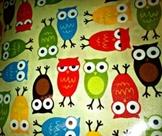 Owls Classroom Pillow Cover