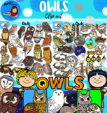 Owls Clip Art- big set- 118 items!