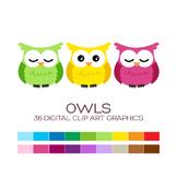 Owls Clipart - 36 digital owls / 3x3 inches - A00043