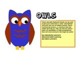 Owls Clipart