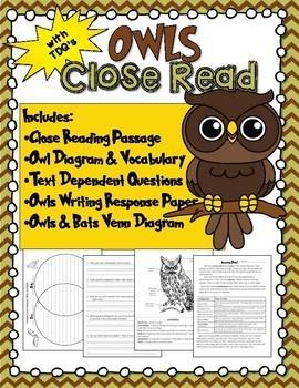 Owls Close Reading & Writing Activity