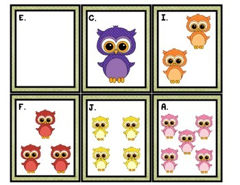 Count the Room: Owls