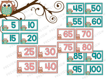 Counting by 5 Cards - Owl Theme