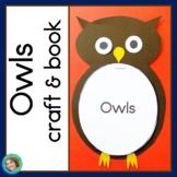 Owls Reading, Craft and Book NO PREP