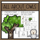 Owls Emergent Reader and Mini Literacy Set