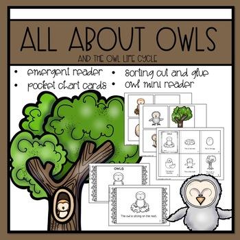 Owls Emergent Reader and Mini Literacy Set